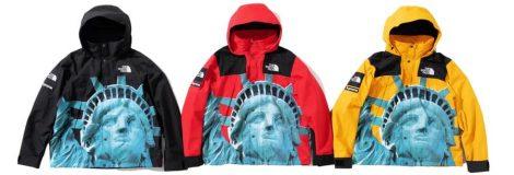 Supreme Statue of Liberty Mountain Jacket