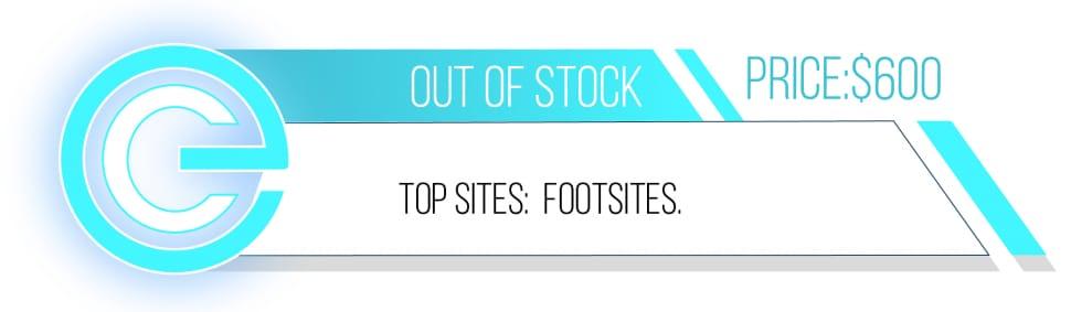 Easycopbots best sneaker bots